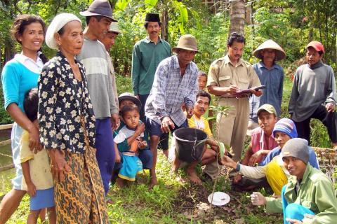 Planting Trees - A family affair